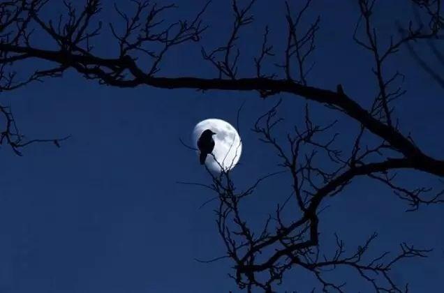 歌德诗歌欣赏 :Wandrers Nachtlied 流浪者的夜歌