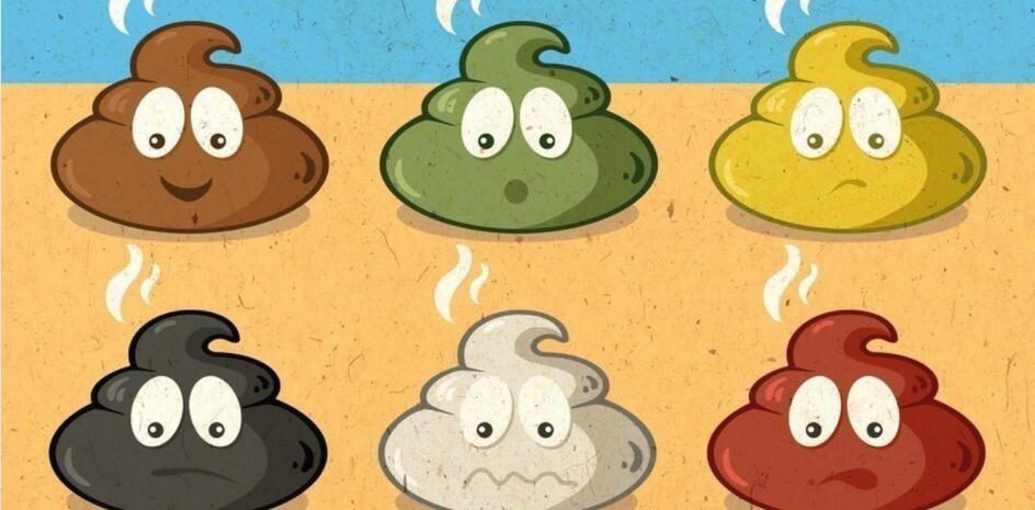 健康小知识:从便便颜色看健康 💩💩💩