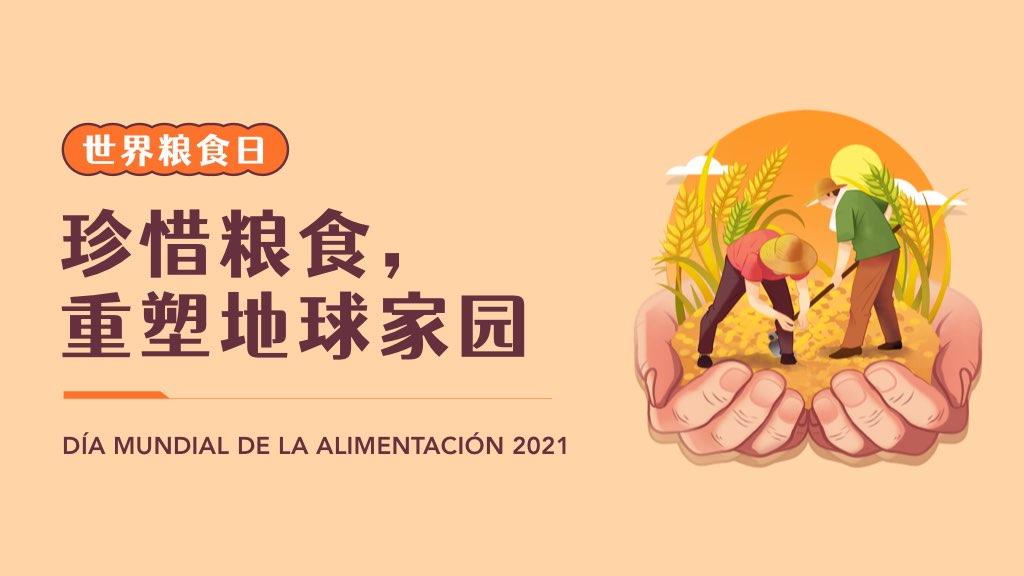 世界粮食日:珍惜粮食,重塑地球家园