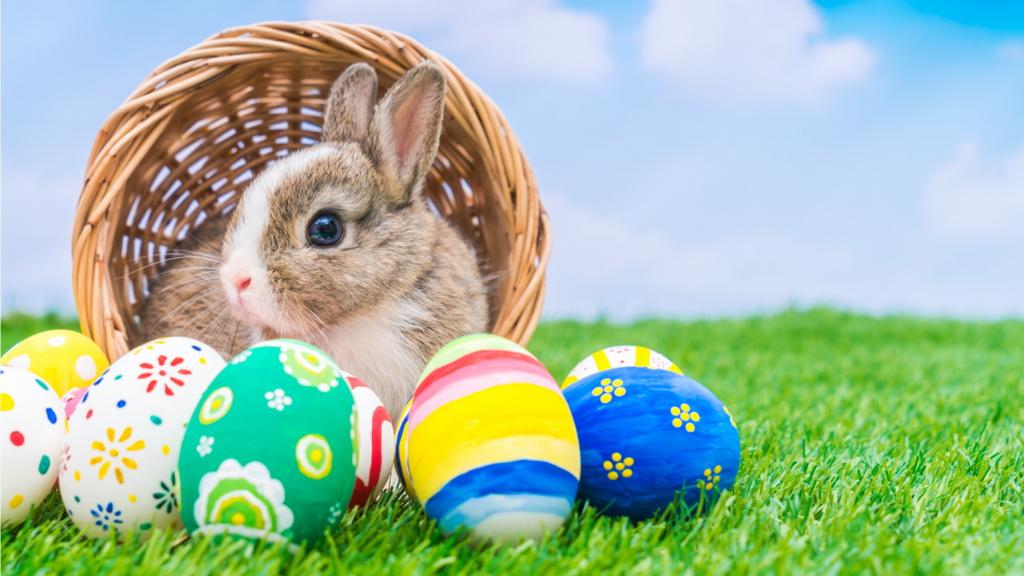 为什么兔子是复活节的象征?复活节彩蛋又是怎么来的?