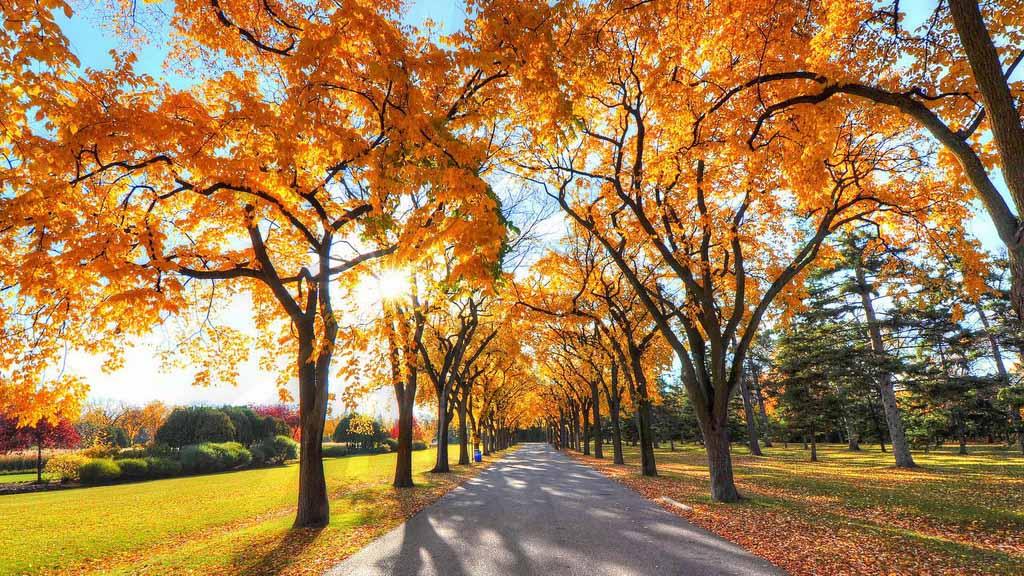 今天是秋分哦!秋分这天有什么含义呢?